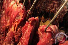 Harga daging sapi di Bandarlampung bertahan karena stok banyak