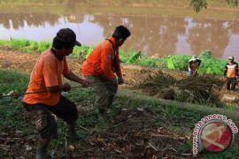 Mentan ingin bantaran Banjir Kanal Timur ditanami sayuran