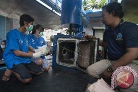 BNNP Bali Musnahkan 9.595 Butir Ekstasi Sitaan