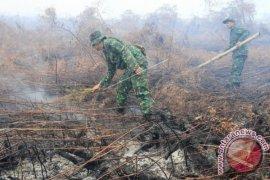 Gubernur Aceh pantau karhutla lewat udara