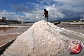 Kiara Pertanyakan Keputusan Pemerintah Untuk Impor Garam Industri