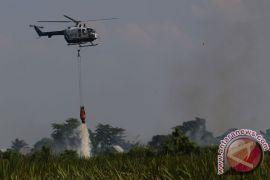 Kalbar siapkan enam helikopter cegah kebakaran hutan
