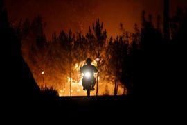 Kebakaran hutan tewaskan 39 orang di Portugal dan Spanyol