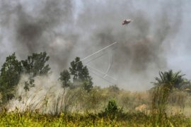 Sintang perlu solusi larangan bakar lahan