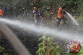 BMKG deteksi 12 titik panas di Riau