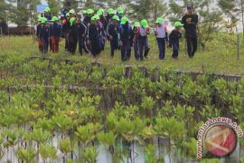 Ekowisata mangrove Muara Gembong dikembangkan PJB