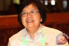 Menteri Siti nyatakan pencemaran merkuri mengancam lingkungan