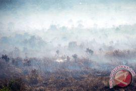 Satelit deteksi lima titik panas di Aceh