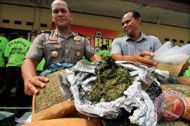 Polisi tangkap pembawa satu kilogram ganja di Pelabuhan Jayapura