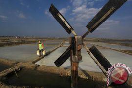 Luhut yakin Indonesia tak lagi impor garam pada 2020