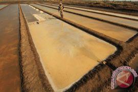 Jokowi panggil empat menterinya bicarakan impor garam