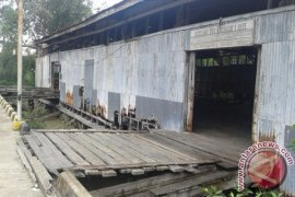 Pancang kayu bulian saksi kejayaan Pelabuhan Kualatungkal  (Video)