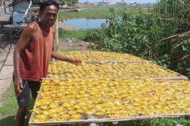 Ikan Air Tawar Dijadikan Ikan Asin di Probolinggo