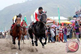 Aceh Gelar Pacuan Kuda Tradisional Promosikan Gayo
