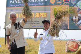 Pemkab Batang bangun taman maritim Rp17 miliar