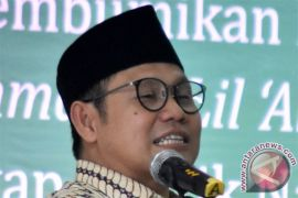 Marhaenis Hijau dukung Muhaimin Iskandar cawapres