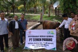 Semen Padang Salurkan CSR Hewan Kurban