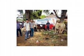 Ketua PCNU Bogor: Kurban Asah Kesalihan Sosial (2 Video)