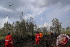 WWF pasang alat pendeteksi kebakaran di Jambi