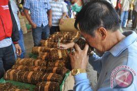 Harga tembakau di Temanggung tembus Rp150.000 per kilogram