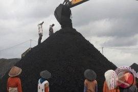 PLN: Batu bara berperan turunkan laba bersih