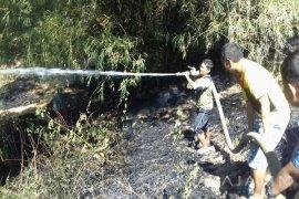 BPBD Pamekasan Cegah Kebakaran Hutan Bambu Meluas