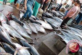 Pemkab Berupaya Wujudkan Ketahanan Pangan Berbasis Perikanan