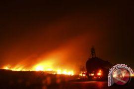 Sepanjang kemarau terjadi 45 kebakaran di Bandung