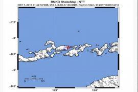 Dampak gempa Lembata, warga Ile Ape diungsikan
