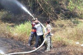 Hutan Bambu di Teja Pamekasan Terbakar