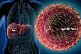 Awas, Sudah sembilan orang meninggal karena virus Nipah