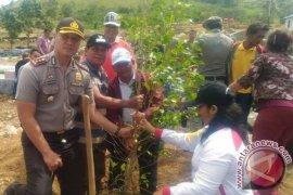 Penghijauan Kabupaten Samosir di Gedung Geopark Kaldera Toba