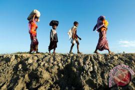 Suu Kyi kunjungi perbatasan Rakhine yang bermasalah