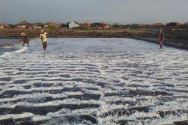 Stok Garam di Kabupaten Probolinggo Dipastikan Aman Selama Masa Pancaroba