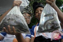 Konsumsi Ikan Bantu Kualitas Tidur dan IQ Anak