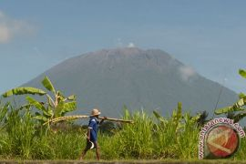 Status Gunung Agung masih awas, meski aktivitas gempa menurun