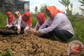 Dharma Wanita Dinas PUPR Kaltim Belajar Restorasi Sungai