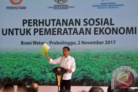 Perhutanan Sosial diyakini solusi kurangi deforestasi