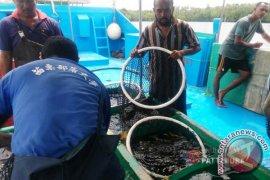 AHY: Pemerintah harus dorong pengelolaan laut Maluku