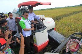 Mentan: stok beras aman sampai bulan Mei