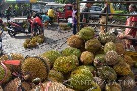 Petani Madiun Raup Untung Saat Musim Durian