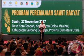 Presiden mulai peremajaan kebun sawit di Sumut