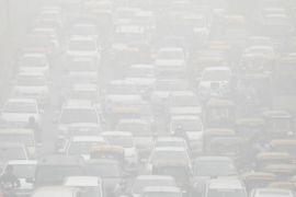 Studi: pemulihan ekologis China kurangi polusi debu