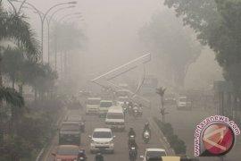 Gubernur Riau tetapkan darurat pencemaran udara akibat kebakaran hutan