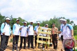 Dinas Lingkungan Hidup Batanghari Tanam 36.000 Pohon