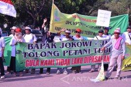 Antisipasi Rembesan, APTRI Nusantara XI Desak Lelang Gula Rafinasi Secara Daring