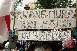 Petani unjuk rasa minta pemerintah stabilkan harga bawang merah