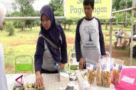 Menikmati Suasana Desa di Kota Jakarta