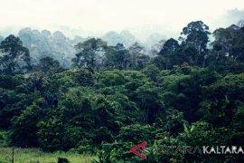 Beberapa obyek wisata Kalimantan Utara Page 4 Small