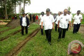 Menteri PUPR: Tahun ini ada 5.000 proyek irigasi